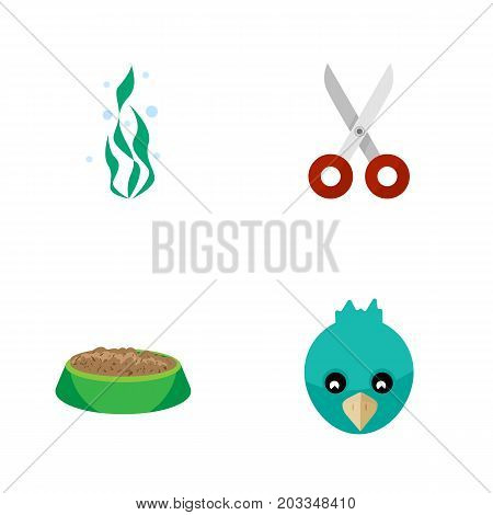 Flat Icon Animal Set Of Shears, Rabbit Meal, Sparrow And Other Vector Objects