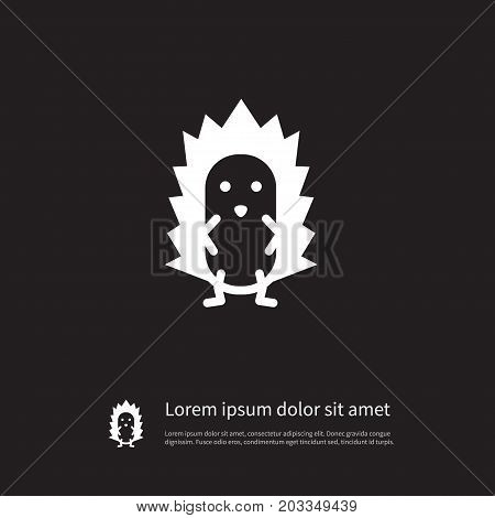 Prickly Vector Element Can Be Used For Spiny, Prickly, Hedgehog Design Concept.  Isolated Spiny Icon.
