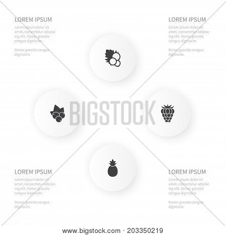 Icon Healthy Set Of Ananas, Blackcurrant, Berry And Other Vector Objects