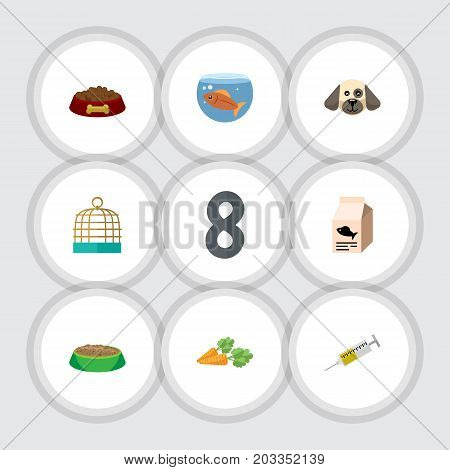 Flat Icon Animal Set Of Rabbit Meal, Vaccine, Puppy And Other Vector Objects