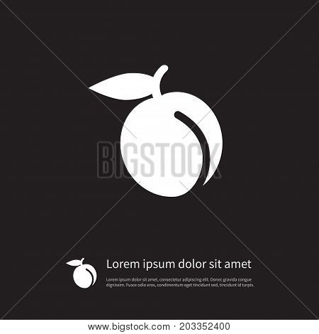 Apricot Vector Element Can Be Used For Juicy, Apricot, Fruit Design Concept.  Isolated Juicy Icon.