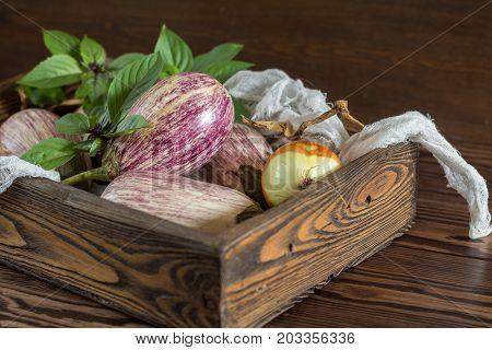 Purple Graffiti Eggplants, Onion And Basil