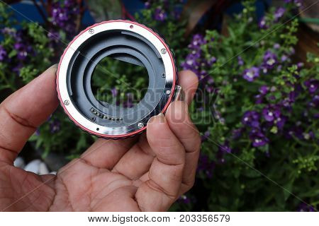 The lens adapter for macro with flowers in the garden background.
