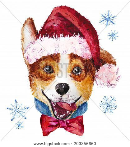 Watercolor artistic Christmas dog in hat portrait isolated on white background. Cute pet animal head hand drawn. Snow corgi puppy. New Year symbol christmas card xmas emblem.