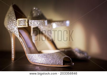 Sexy High Heel Stiletto Elegant Style Shoes