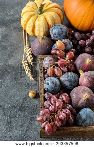 Autumn harvest with pumpkin grapes plums figs. Healthy organic fruit and vegetables. Thanksgiving still life vertical food background