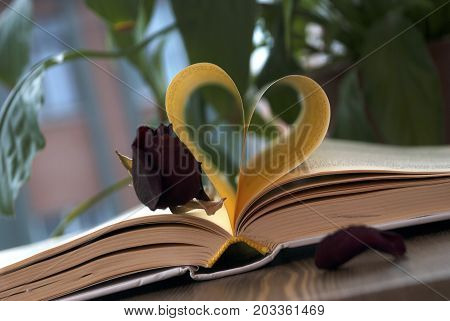 Love and book. Heart shape made from book pages