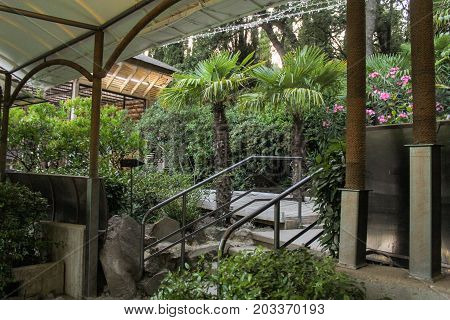 Yalta, Crimea - 11 July, Plants in the zoo, 11 July, 2017. Zoo and animals on the territory of the hotel Yalta Intourist.