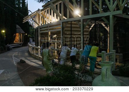 Yalta, Crimea - 11 July, Spectators in the aviary with animals, 11 July, 2017. Zoo and animals on the territory of the hotel Yalta Intourist.