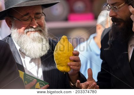 JERUSALEM, ISRAEL - OKTOBER 16, 2016: Traditional market before the holiday of Sukkot. Two religious Jews - orthodox choose a ritual fruit - etrog
