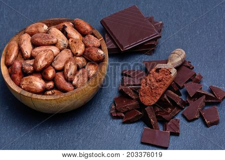 Cacao beans in a bowl with chocolate on slate close-up
