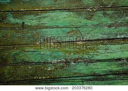 Green weathered wooden planks from a door