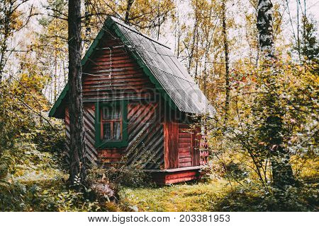 Small old reddish wooden house in tourist centre with birch trees autumn grasses and plants of forest around Altai mountains in Aya district Russia