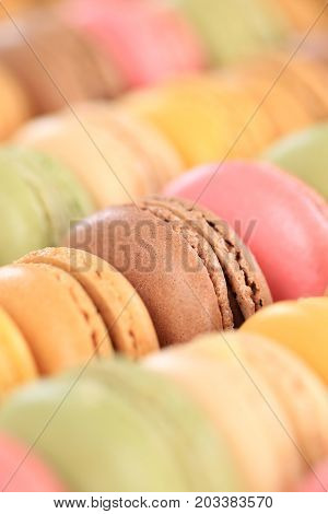 Macarons Macaroons Colorful Cookies Portrait Format Dessert From France