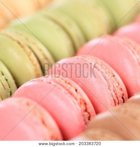 Macarons Macaroons Closeup Square Cookies Dessert From France