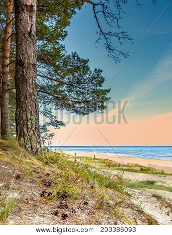 Sandy beach of the Baltic Sea in public nature reserve in Latvia, Europe