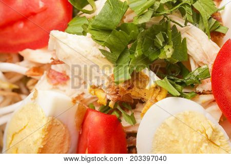 Pork salad with vegetables and eggs, close up