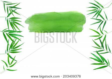 Green bamboo leaves watercolor illustration. Handdrawn zen background. Oriental banner template with text place. Tropical leaf decor. Bamboo leaf border. Green watercolor blot. Beauty or yoga backdrop