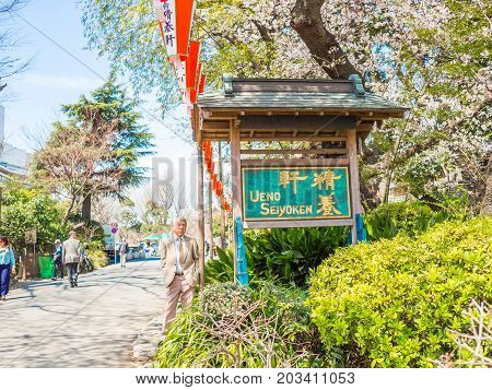 HAKONE, JAPAN - JULY 02, 2017: Unidentified people walking in a park and enjoying the view in hanami park during cherry blossom season in Kyoto, Japan.