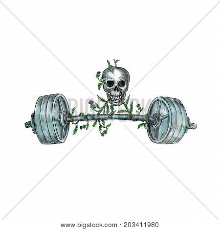 Tattoo style illustration of a skull lifting a heavy weight barbell with vine of Scottish thistle on isolated background.