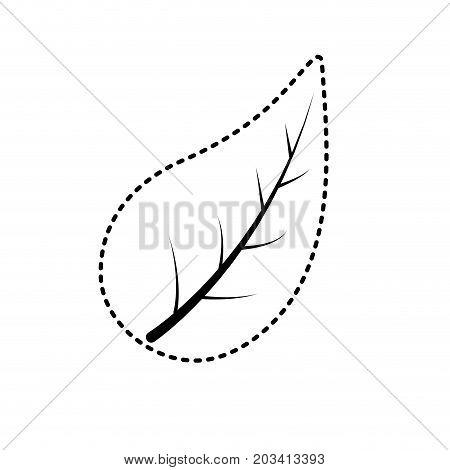 dotted shape natural leaf of plant and exotic botany vector illustration