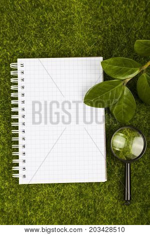 Notebook,, Magnifier And Green Leaves On The Grass