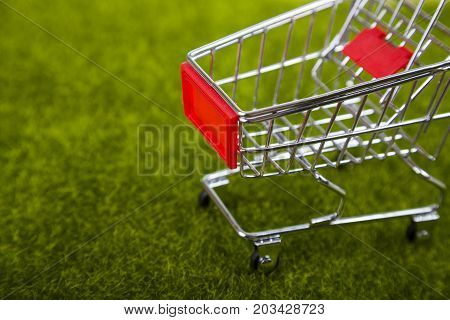 Shopping cart on green grass close-up .