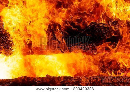 fascinating graphic detail of burning fire consuming wooden logs