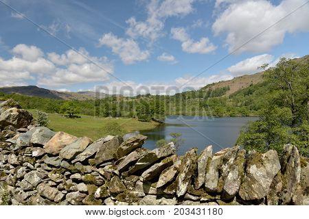 Nab Scar above Rydalwater, English Lake District