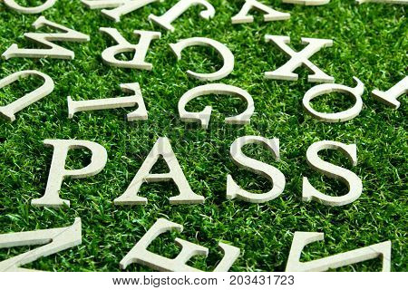 Wood letter in wording pass on artificial green grass background