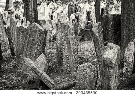 Jewish cemetery in Prague Czech republic. Memorial place. Many graves. Historical object. Black and white photo.