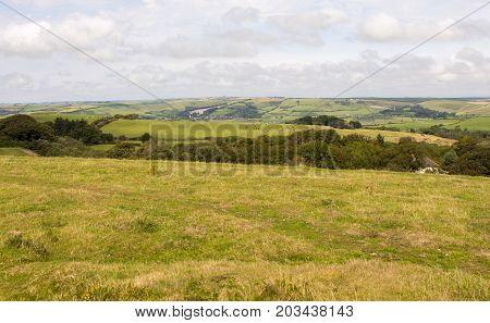 Dorset countryside UK viewed from Ballard Down