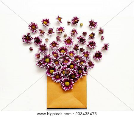 Flower buds with open paper envelope on white background. Love letter. Flay lay composition.