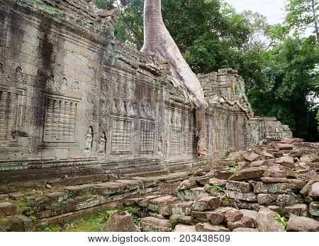 Preah Khan temple at Angkor popular among tourists ancient landmark and place of worship in Southeast Asia. Siem Reap Cambodia. Preah Khan temple has been swallowed by jungle.