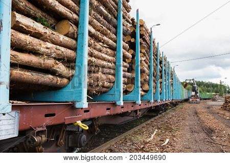 Loading of timber on railroad cars. Loader in work