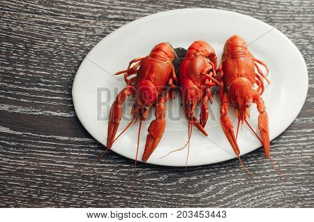 Crayfish On A White Plate On A Dark Background