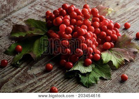Rowan Berries On Vintage Wooden Boards
