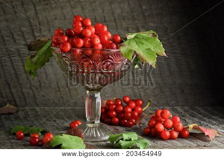 Red Rowanberry In A Vase On A Wooden Background