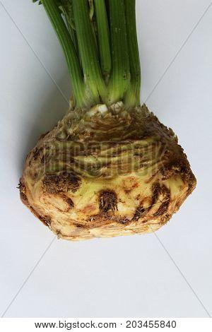 Closeup view of celeriac bulb root, vertical aspect