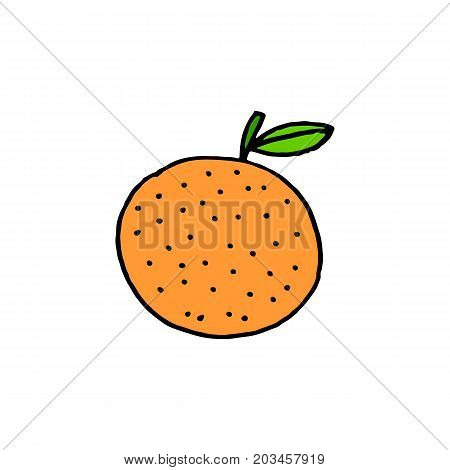 Linear cartoon hand drawn orange. Cute vector colorful orange doodle. Isolated cheerful orange silhouette on white background.