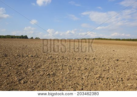 Plowed Soil In Summer