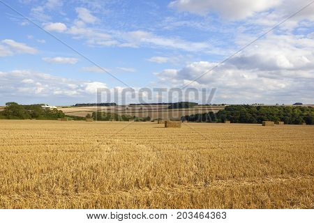 Hay Bales And Scenery