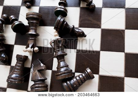 Black And White King And Knight Of Chess Setup On Dark Background . Leader And Teamwork Concept For