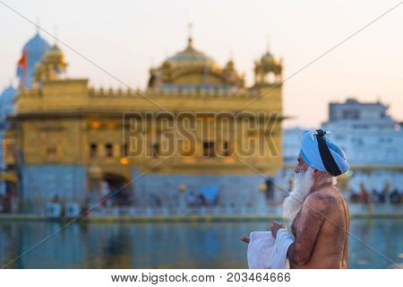 Amritsar India - March 17 2017: worshipper inside the Golden Temple complex at Amritsar Punjab India the most sacred icon and worship place of Sikh religion.