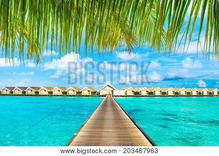 Wooden villas over water of the Indian Ocean Maldives view under the branches of palm trees