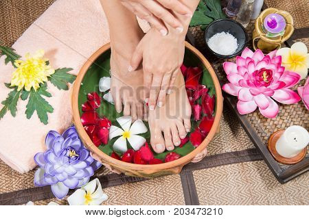 Female feet at spa pedicure procedure, Closeup photo of a female feet at spa salon on pedicure procedure, Female legs in water decoration the flowers