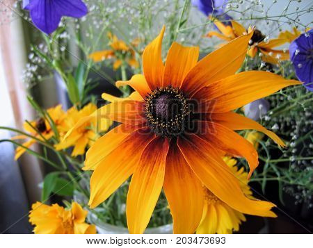 Beautiful bright bouquet with close-up of rudbeckia flower