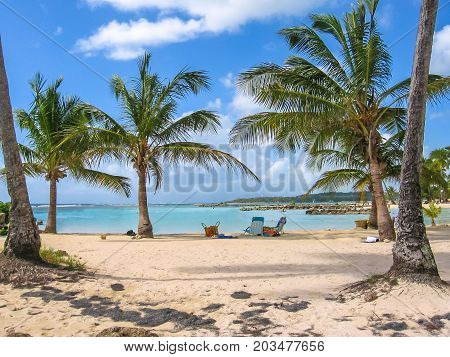 Coconut palms, turquoise sea and white sandy beach of famous Sainte-Anne, Guadeloupe, Antilles, Caribbean.