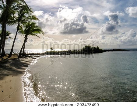Coconut palms, turquoise sea and white sandy beach of Sainte-Anne at sunset in Guadeloupe, Grande-Teerre, Antilles, Caribbean.