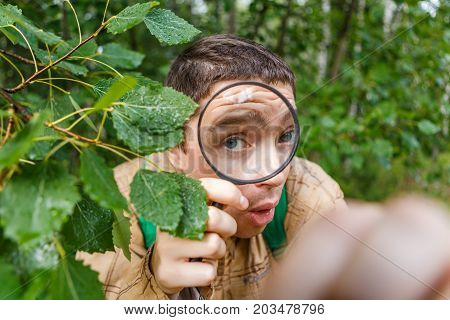 Image of ecologist man with magnifying glass in summer forest